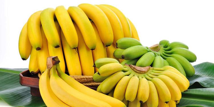 Cambodian Banana