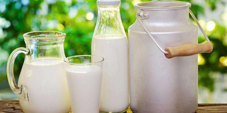 Sino-Russian Dairy