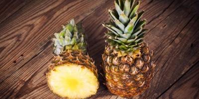 Panama Pineapple Plants