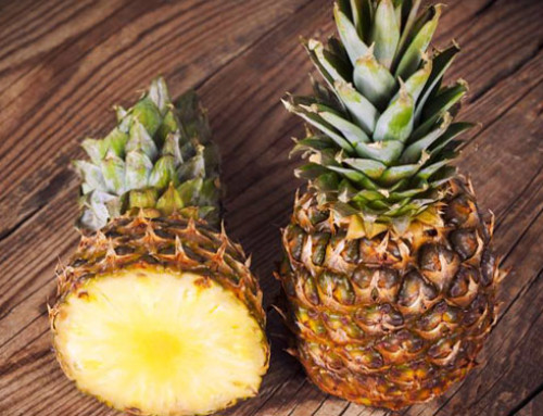 Quarantine Requirements for Importing Panama Pineapple Plants