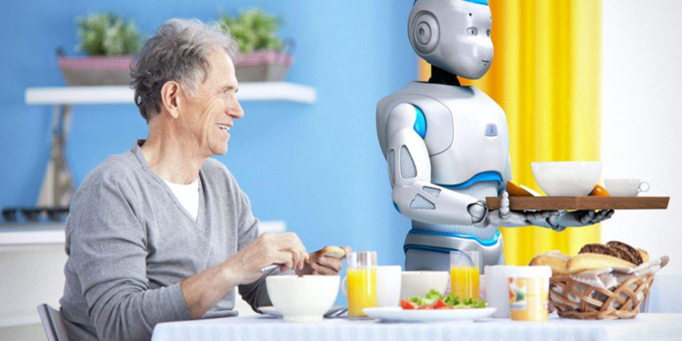 Intelligent service robot