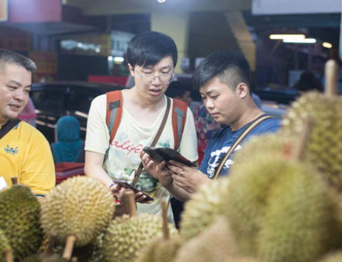 In May, China decided to allow imports of Malaysian durians