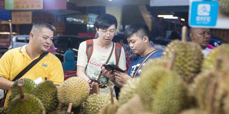 Malaysian whole durians